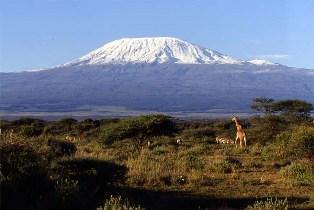 kilimanjarobc1